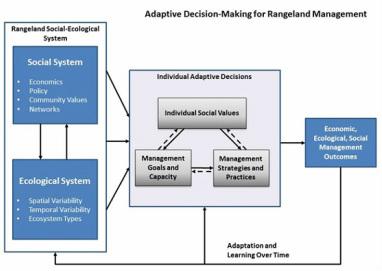 Adaptive decision-making framework (Lubell et al. 2013).