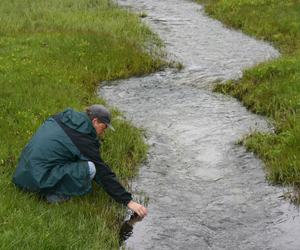 Water sample being collected from stream
