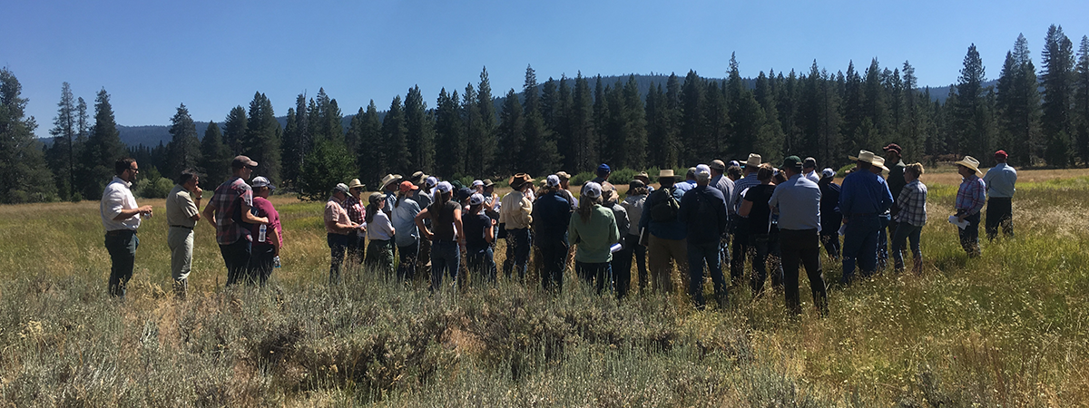Rustici Rangeland Science Symposiums and Tours