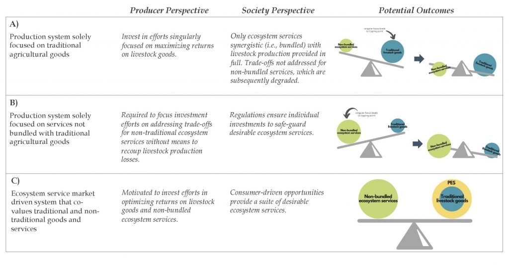 Table depicting outcomes using a balance beam concept, with 1 ball representing traditional livestock goods and 1 ball representing non-bundled ecosystem services on opposite sides of the beam.  A)Production system solely focused on traditional agricultural goods a.Producer Perspective: Invest in efforts singularly focused on maximizing returns on livestock goods.  b.Society Perspective: Only ecosystem services synergistic (i.e., bundled) with livestock production provided in full. Trade-offs not addressed for non-bundled services, which are subsequently degraded.  c.Potential Outcomes: Singular focus on livestock goods (bigger ball) leads to tipping point—causing imbalance and collapse for both traditional livestock goods and non-bundled ecosystem services.  B)Production system solely focused on services not bundled with traditional agricultural goods  a.Producer Perspective: Required to focus investment efforts on addressing trade-offs for non-traditional ecosystem services without means to recoup livestock production losses.  b.Society Perspective: Regulations ensure individual investments to safe-guard desirable ecosystem services.  c.Potential Outcomes: Singular focus on non-bundled ecosystem services (bigger ball) leads to tipping point—causing imbalance and collapse for both traditional livestock goods and non-bundled ecosystem services.  C)Ecosystem service market driven system that co-values traditional and non-traditional goods and services a.Producer Perspective: Motivated to invest efforts in optimizing returns on livestock goods and non-bundled ecosystem services.  b.Society Perspective: Consumer-driven opportunities provide a suite of desirable ecosystem services.  c.Potential Outcomes: Payments for ecosystem services (PES) provide additional support ('weight') for the smaller livestock goods ball, resulting in both balls being equally balanced.